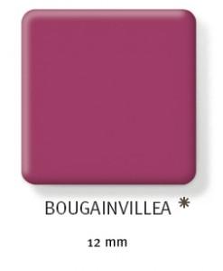bougainvillea-247x300