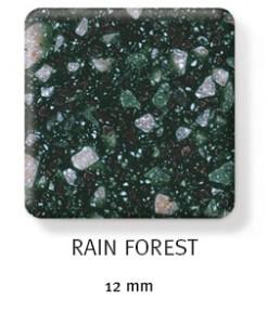 rainforest-247x300