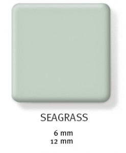 seagrass-247x300