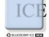 blueberryice-247x300