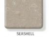 seashell-247x300
