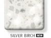 silverbirch-247x300