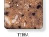 terra-247x300